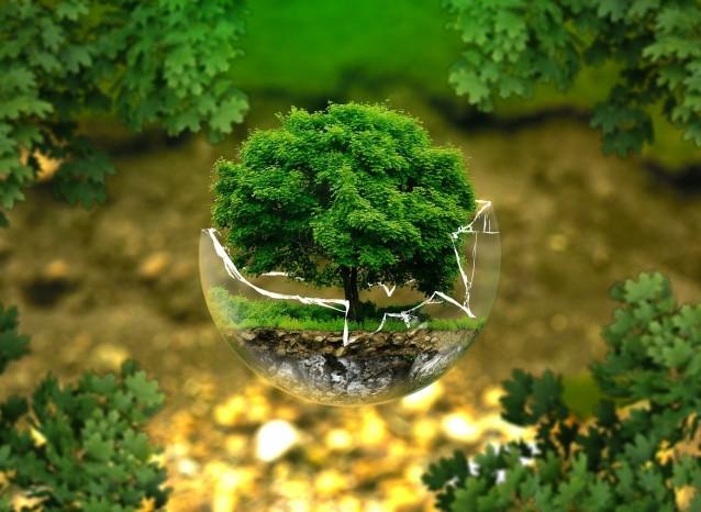 いまさら聞けない環境・CSRの疑問…LCAとは?